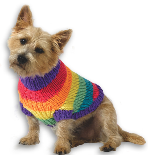 Rspca Knitting Patterns For Dogs : Knitters & Crocheters-RSPCA Craven and Upper Wharfedale Branch